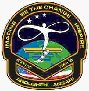 Anoushesh Ansari's badge she wore in space.