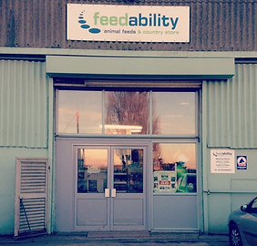 Feedability front door.png