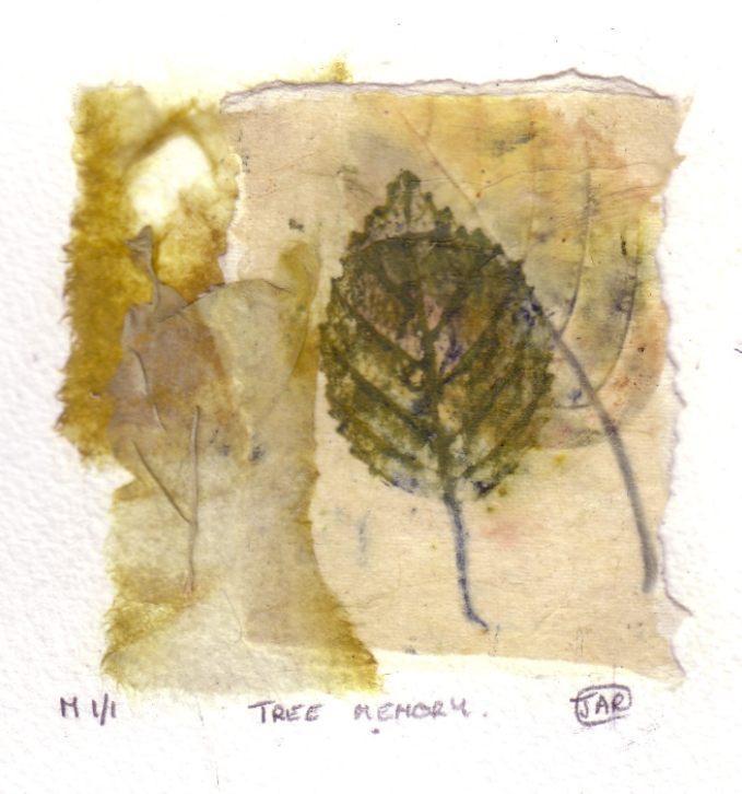 Tree memory - Monoprint & collage