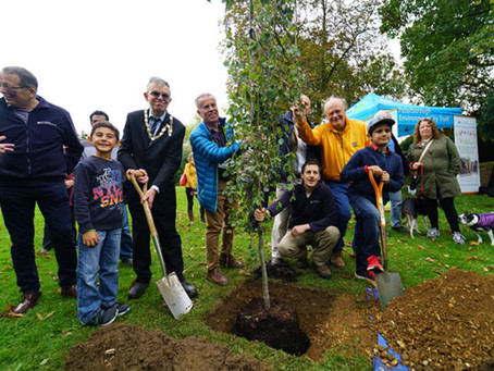 NEW MILESTONE REACHED IN FOREST FOR PETERBOROUGH