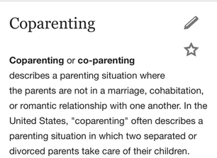 Co-Parenting with who?