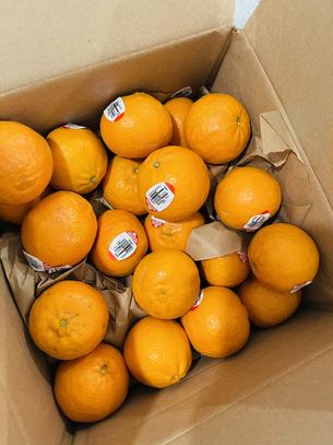 Have Tangerines? You MUST make Khoreshteh Narengee for Dinner Tonight!