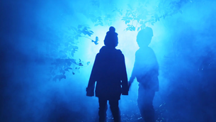 Experience Enchanted: Forest of Light at Descanso Gardens from Nov. 18 – Jan. 6.