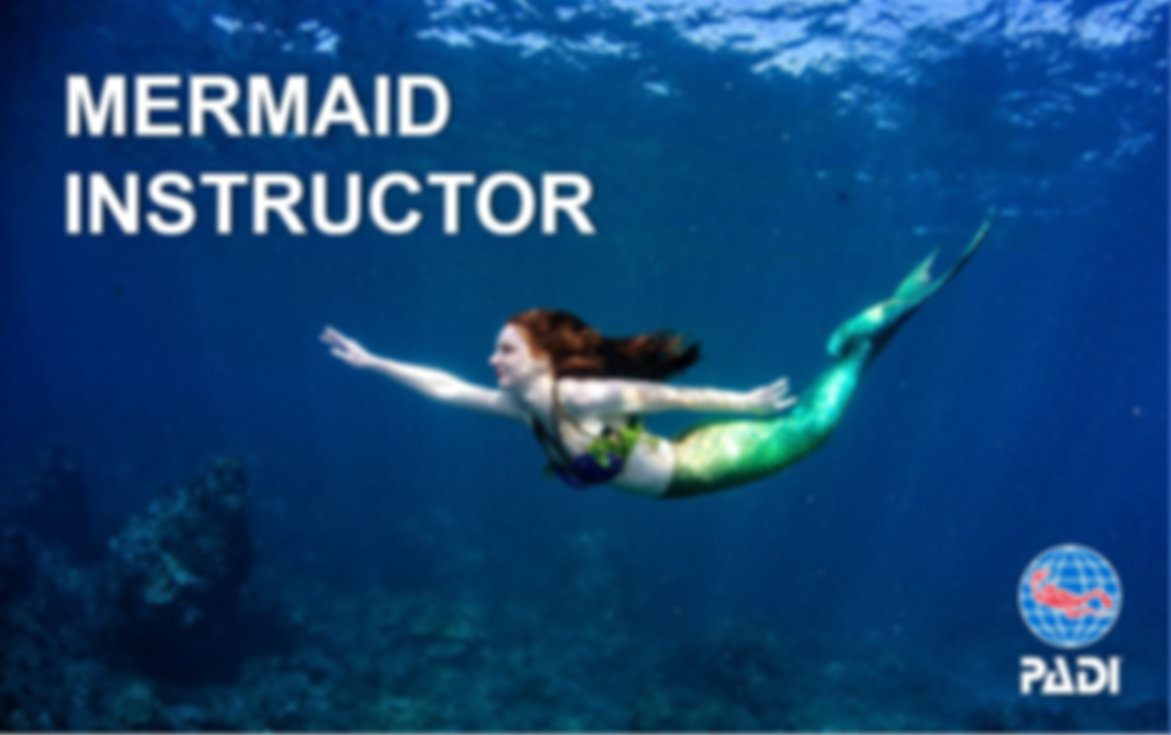 USA California - PADI Mermaid Instructor Certification Class
