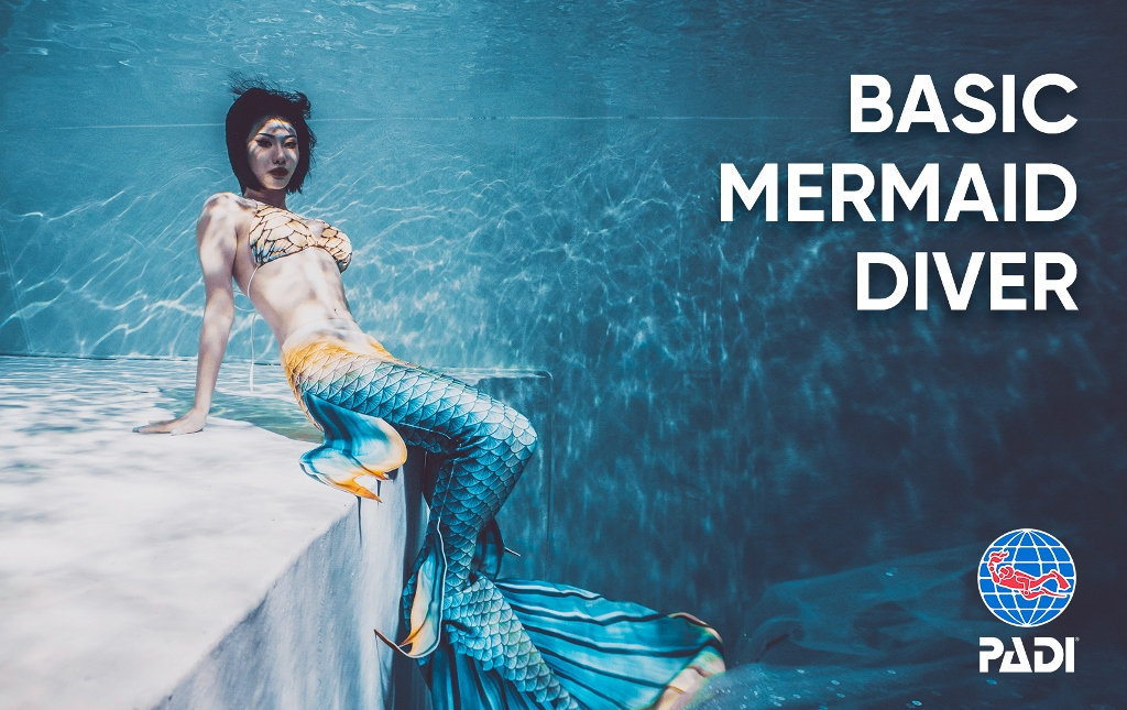 PADI Basic Mermaid Certification