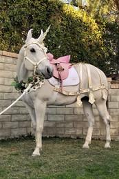 Milo the Unicorn - Elegant Simplicity Co