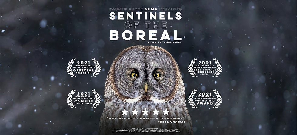 KOECK_Sentinels of the Boreal Poster str