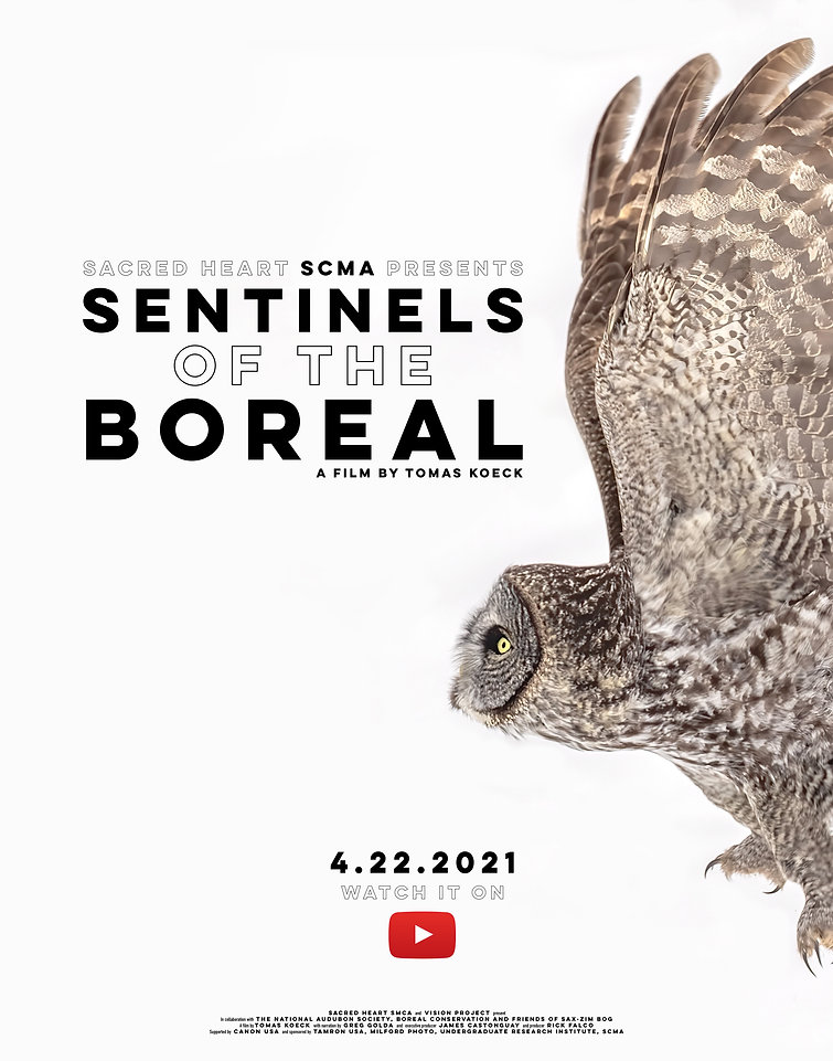 KOECK_Sentinels of the Boreal Release Po