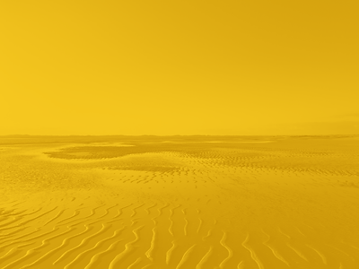 DH_yellow_05.png