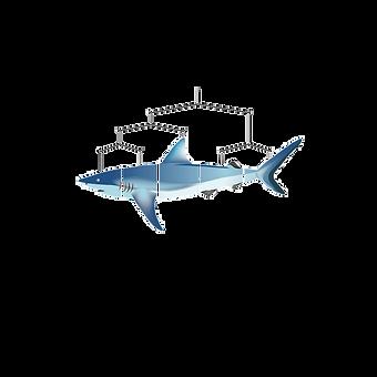 Mobile_Shark.png