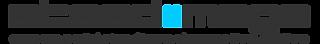 Steadiimage Logo