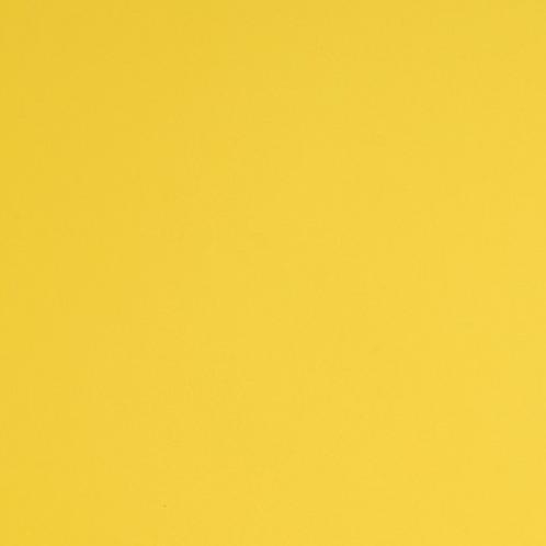 E3116M  Light Yellow Matt