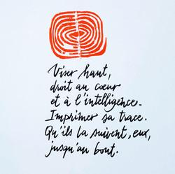 Calligraphie vectorisée