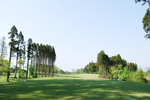 千葉習志野ゴルフ  4泊 5日 3球場(申込金)