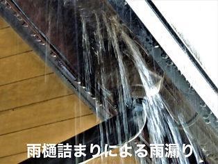 雨樋詰まり.jpg