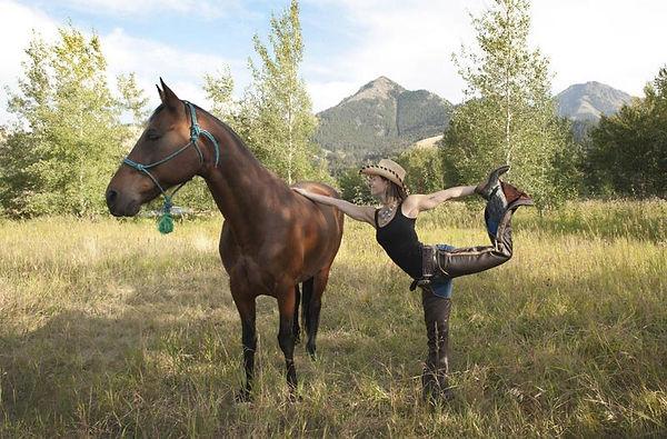 horse yoga nature.jpg