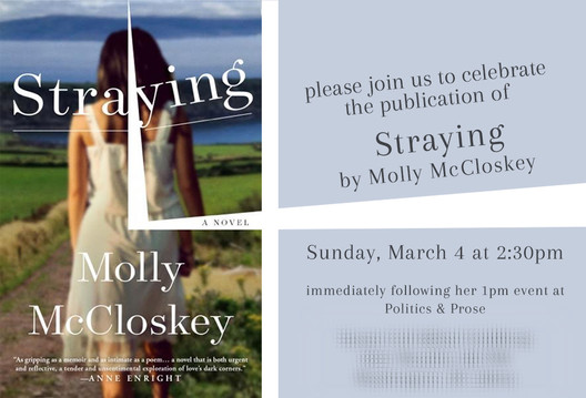 Book party invitation