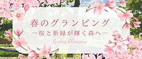springLP_banner.jpg