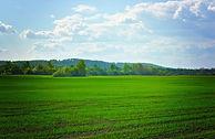 fields-72899_960_720.jpg