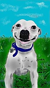 smiling dog_006.png