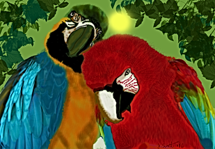Parrot Love.png