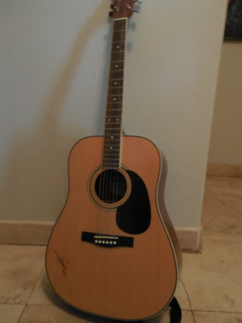 Fender Starcaster Acoustic Guitar