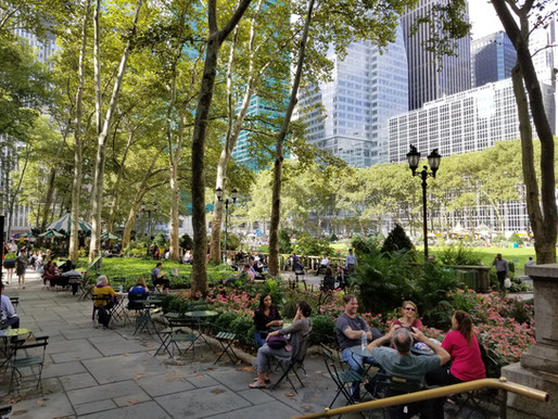 New York City- The concrete jungle