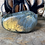Thumbnail: Labradorite Palm (Orange Flash)