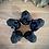 Thumbnail: Obsidian Toothless