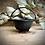 Thumbnail: Pentagram Cauldron without Lid