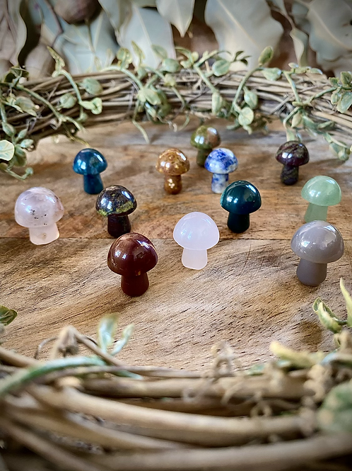 Mini Mushrooms (Intuitively Chosen)