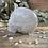 Thumbnail: Clear Quartz Skull