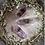 Thumbnail: Smoky Amethyst DT (Large)