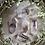 Thumbnail: Smoky Amethyst DT (Medium)