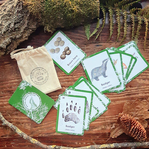 Woodland Animal Tracks & Signs Cards