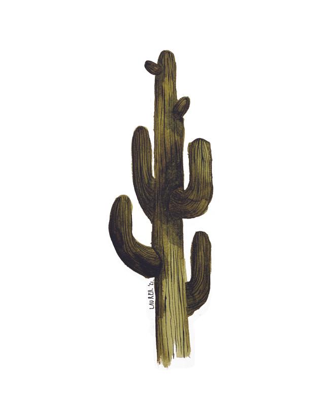 Saguaro no. 1