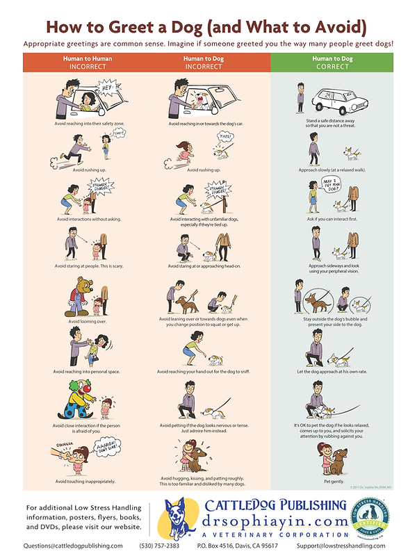 How-to-Greet-a-Dog-Poster.png