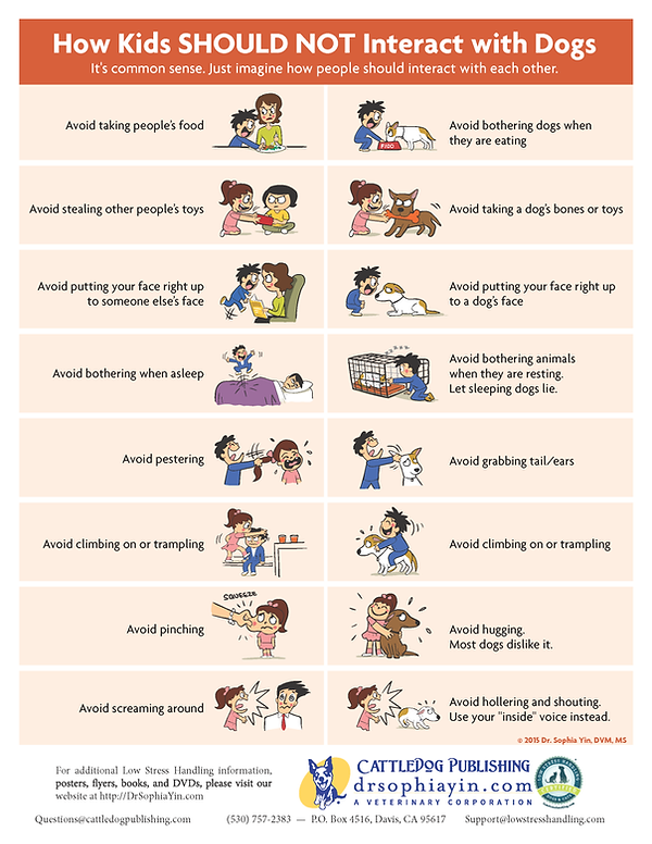 How-Kids-Should-NOT-Interact-With-Dogs-P