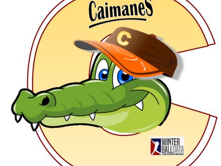 """Winterballdata """"digitaliza"""" logo de los Caimanes del Sur"""