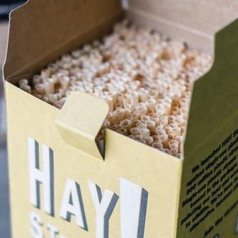 hay straws eco friendly ice house