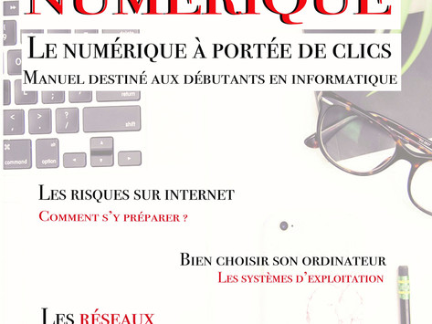 Le Manuel du Numérique : pourquoi ?