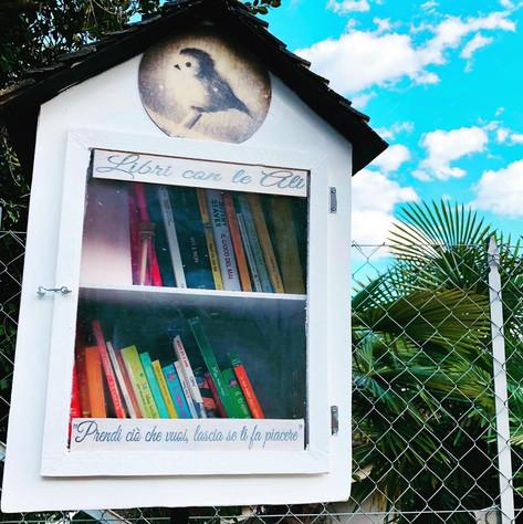 libri con le ali.jpg
