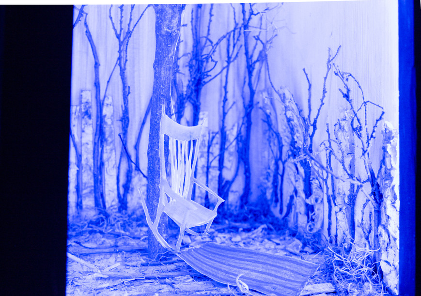 Andrea's dream_show documentation_largef