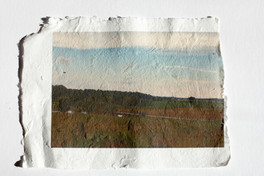 untitled (1 of 1).jpg