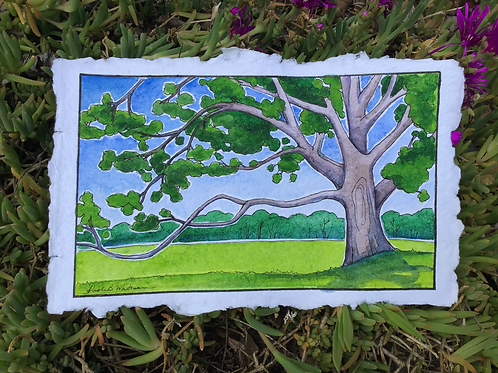 """""""Meet You at the Climbing Tree"""" - Watercolor Sketch"""