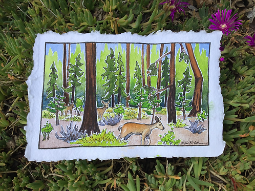 Backyard Visitors - Watercolor Sketch