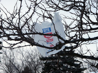 Remove Compostable Bags from the Boston Bag Ban