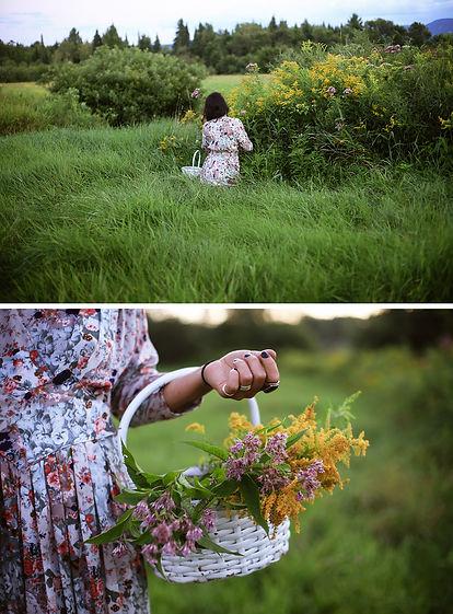 La_récolte_de_fleurs.jpg