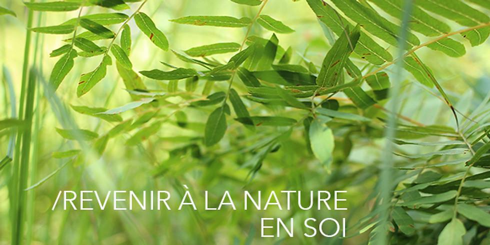 PROGRAMME CONTINU -REVENIR À LA NATURE EN SOI