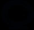 Logo NOIR 300.png